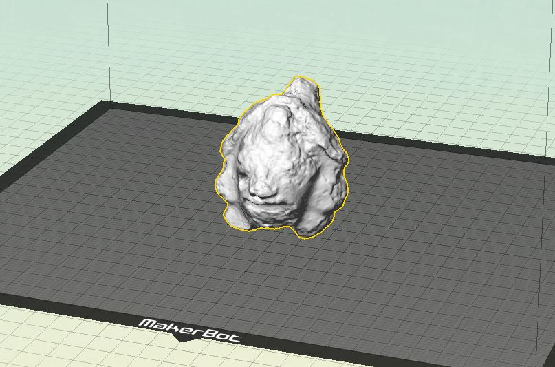 Image of 3D scan in the 3D printing software