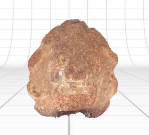 Image of 3D scan of artifact