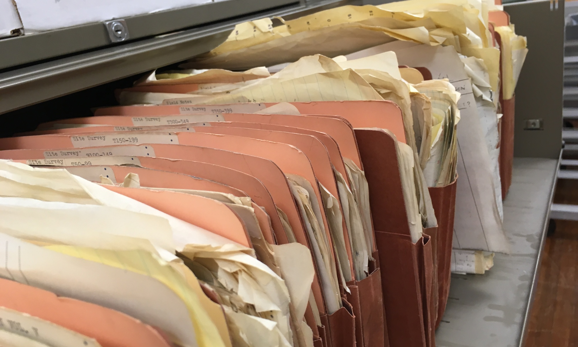 Folders full of Scotty MacNeish's Tehuacan survey records from the 1960s