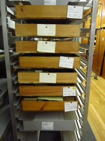 Drawers pulled for research