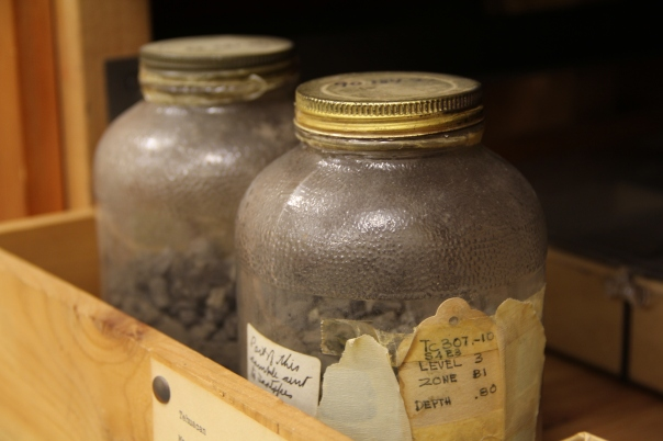 Image of soil samples from Mexico stored in two large food our sauce jars.