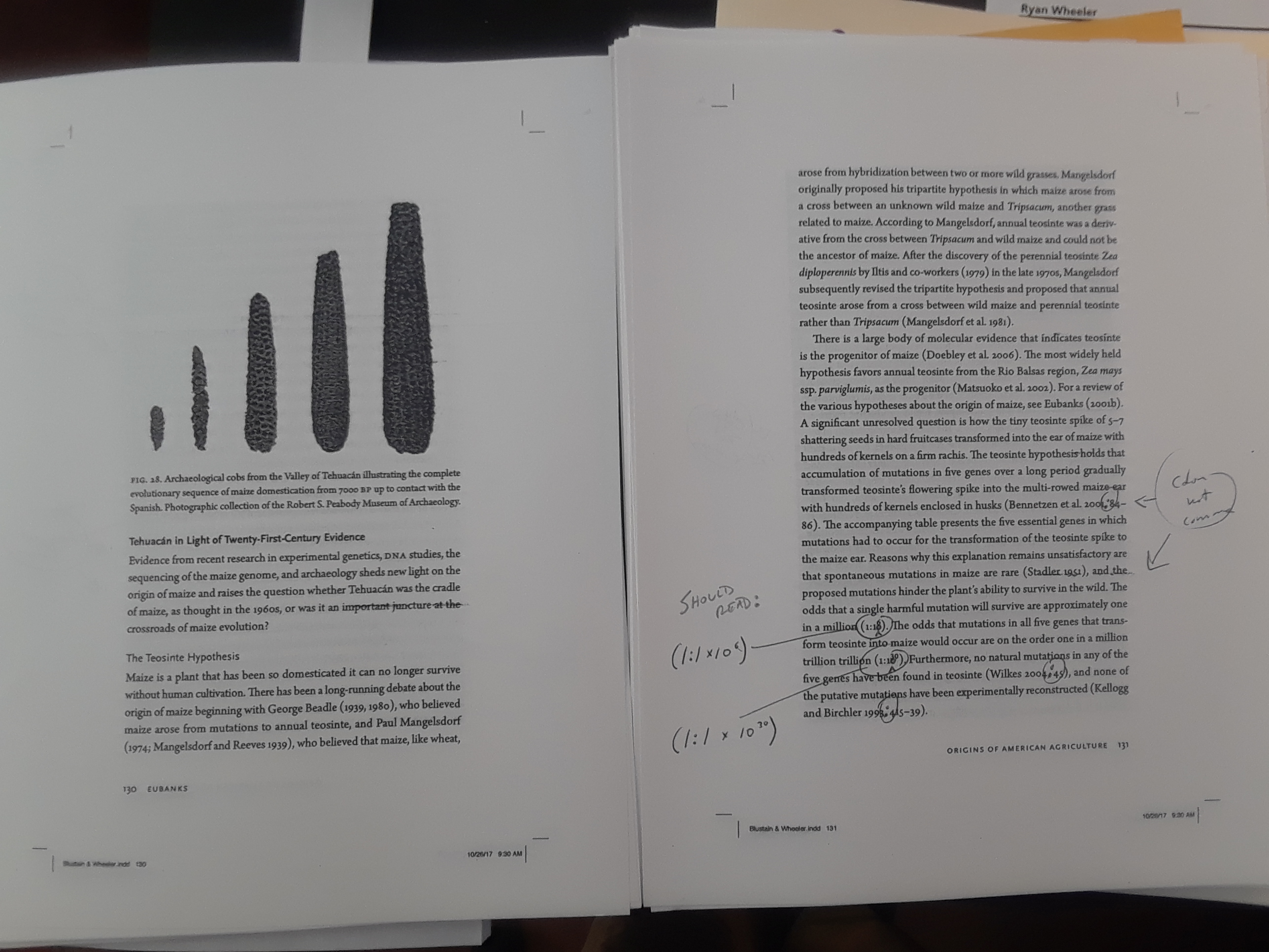 Image of galley proofs showing mark up.