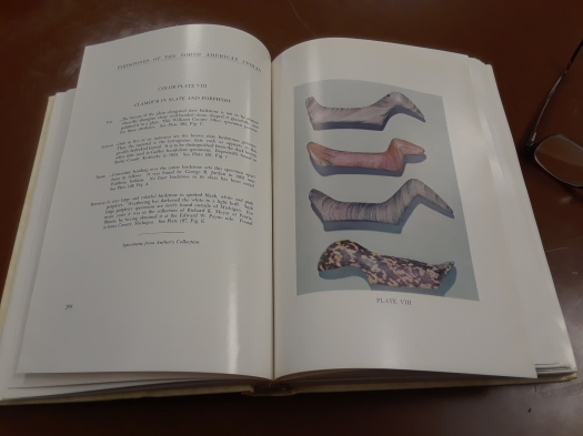Image from the Townsend Birdstones book showing a color plate.