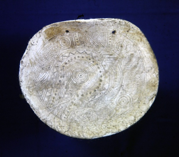 Image of shell gorget with stylized rattlesnake design engraved on surface.