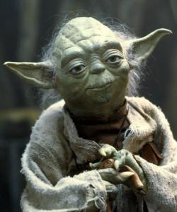 Yoda_Quinn