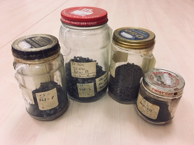 Jars of Carbon Samples from various sites in the Tehuacán Valley.