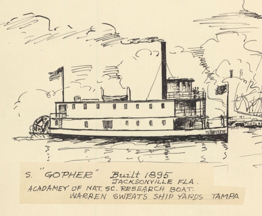 Drawing of Clarence B. Moore's steamer, The Gopher, a stern wheel steam boat.
